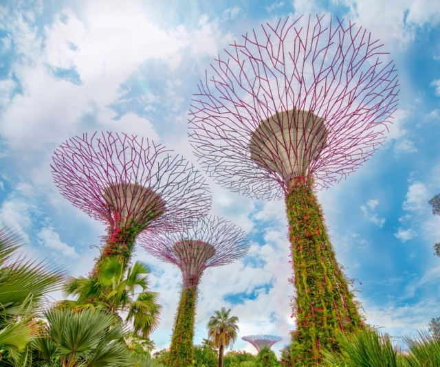 Sizzling Singapore with Cruise